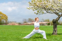 Woman is practicing yoga, doing Virabhadrasana exercise, standing in Warrior pose near tree royalty free stock image