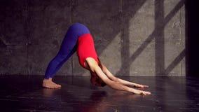 Woman practicing yoga in a studio indoors. Female doing yoga in a studio with natural light. Female performing yoga. Woman practicing yoga in a studio indoors stock footage