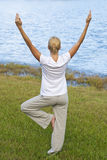 Woman Practicing Yoga By A Tranquil Blue Lake Royalty Free Stock Images