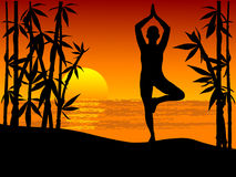 Woman practicing yoga tree position Stock Image