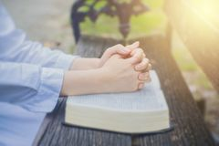 Woman pray with bible in the garden. Stock Images