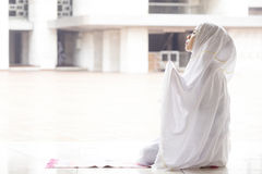 Woman praying in mosque. While wearing prayer veil Stock Photography