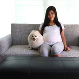 Woman pregnant 9 month and pomeranian dog Royalty Free Stock Images