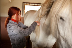 Woman prepare horse for riding. Making braid in stable Royalty Free Stock Photography