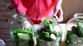 Woman preparing homemade canned cucumbers for winter stock video