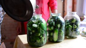 Woman preparing homemade canned cucumbers for winter at home stock video footage