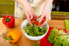Woman preparing salad with tomatoes, pepper and avocado on the r Stock Photos