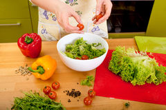 Woman preparing salad with tomatoes, pepper and avocado on the r Royalty Free Stock Image