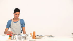 Woman preparing sauce for lunch Royalty Free Stock Photo