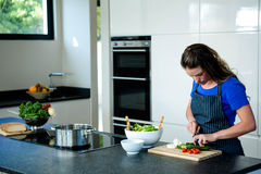 woman preparing sliced vegetables for dinner Royalty Free Stock Photos