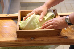 Woman preparing sourcrout with a wooden fad. Closeup royalty free stock image