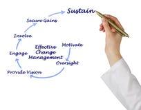 Effective Change Management. Woman presenting Effective Change Management royalty free stock images