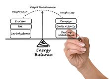 Energy Balance. Woman presenting Energy Balance in weigh maintenance Royalty Free Stock Images