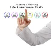 Factors Affecting Life Insurance Costs. Woman presenting Factors Affecting Life Insurance Costs Stock Image
