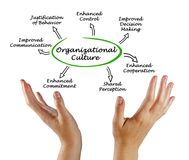 Functions of Organizational Culture. Woman presenting Functions of Organizational Culture Stock Photo