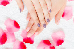 Woman presenting her beautiful painted gel hybrid nails Royalty Free Stock Photography