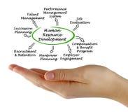 Human resource development. Woman presenting human resource development vector illustration