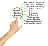 Integrated Marketing Solutions. Woman presenting Integrated Marketing Solutions royalty free stock photos