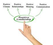 Positive Leadership Benefits. Woman presenting Positive Leadership Benefits Royalty Free Stock Photo