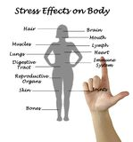 Stress effects on body royalty free stock photos