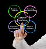 What better off Customer Experience. Woman presenting What better off Customer Experience stock images