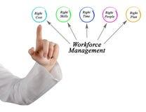 Workforce Management targets. Woman presents Workforce Management targets Stock Photography