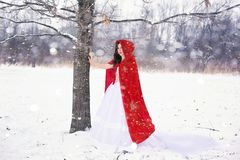 Woman, Pretty, Happy, Girl, Winter Royalty Free Stock Images