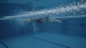 Woman professional swimmer swimming crawl stroke in water pool underwater view. Woman professional swimmer swimming crawl stroke in blue water pool underwater stock video