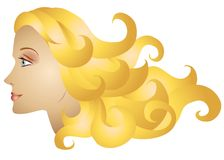 Woman Profile Long Blonde Hair. A clip art illustration of a woman - a female model profile with long blonde hair flowing outward to the right Royalty Free Stock Images