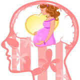 Woman profile with visible brain. Pregnancy. Stock Photos