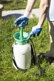The woman in protective gloves pumps the spray in the sprayer. Preparation for spraying with a manual sprayer.n royalty free stock images