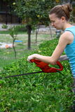 Woman pruning shrub with tool in garden Stock Image