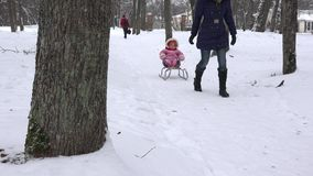 Woman pull baby child on sledge through snow in park tree alley. 4K stock video footage