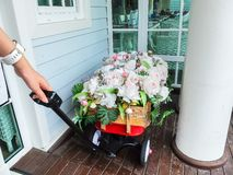 Woman Pulling The Decorated Bunch of Flowers Cart Stock Photography