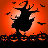 Woman Pumpkin Means Trick Or Treat And Bats Royalty Free Stock Image