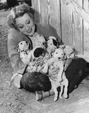 Woman with puppies Stock Images