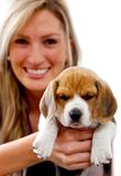 Woman with a puppy Royalty Free Stock Photo