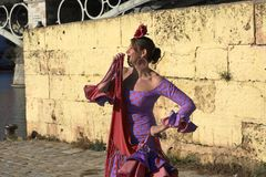 The woman in a purple flamenco dress smiling amused. The beautiful Spanish girls dressed in Flamenco dresses stock image