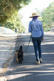 Woman with Purple Hair Walking Goats on Country Road Royalty Free Stock Photos