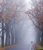 A woman in purple jacket walking on a street on a foggy november morning Royalty Free Stock Photos