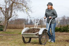 Woman pushing barrow. In garden, early spring scene stock photography