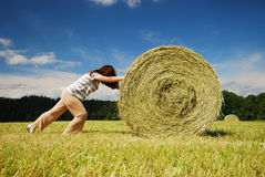 Woman pushing the straw bale Stock Photography