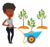 Woman pushing wheelbarrow with plant. Royalty Free Stock Images
