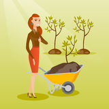 Woman pushing wheelbarrow with plant. Stock Image