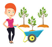 Woman pushing wheelbarrow with plant. Royalty Free Stock Photos