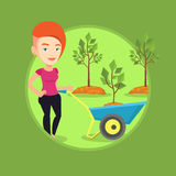 Woman pushing wheelbarrow with plant. Stock Photography