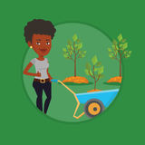 Woman pushing wheelbarrow with plant. Royalty Free Stock Image
