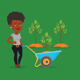Woman pushing wheelbarrow with plant. Young gardener pushing wheelbarrow with tree and dirt in the park. An african-american gardener with wheelbarrow on a Stock Photo