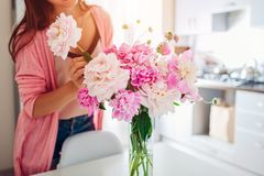 Woman puts peonies flowers in vase. Housewife taking care of coziness and decor on kitchen. Composing bouquet royalty free stock photo