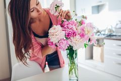 Woman puts peonies flowers in vase. Housewife taking care of coziness and decor on kitchen. Composing bouquet royalty free stock images